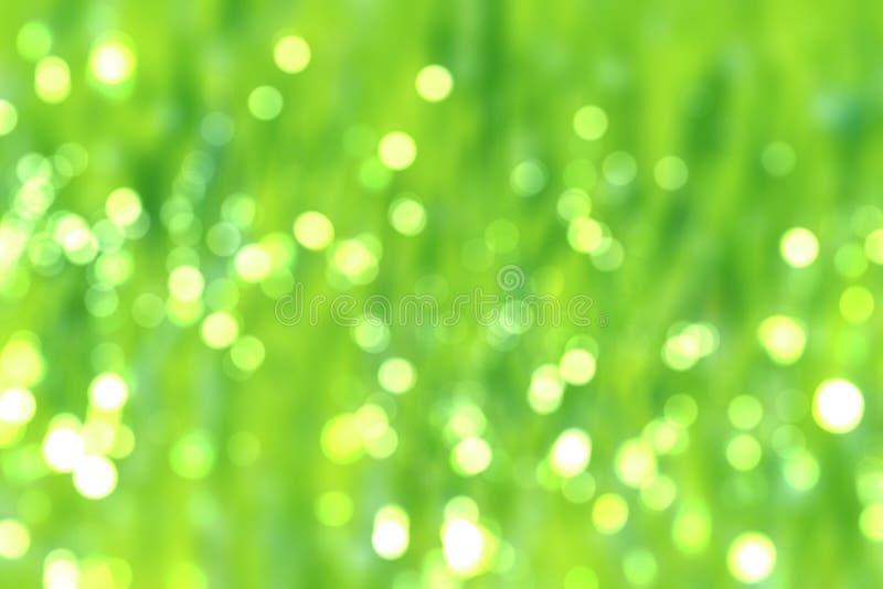 De vage abstracte weelderige weide van achtergrond natte grasschaduwen bokeh stock foto