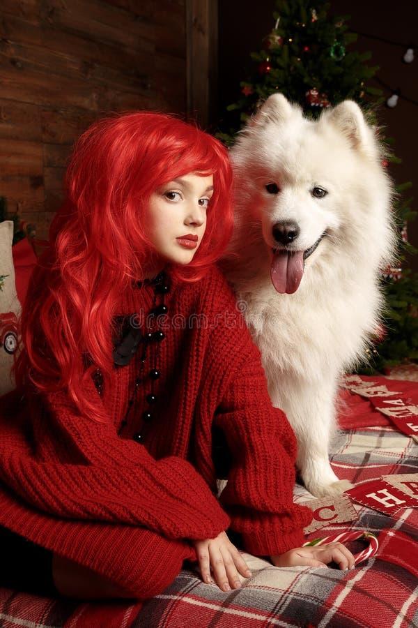 De vakantie en Kerstmis van de de winterhond Een meisje in een gebreide sweater en met rood haar met een huisdier in de studio Ke royalty-vrije stock foto