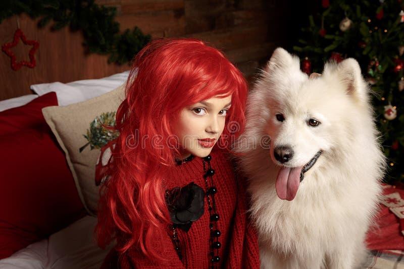 De vakantie en Kerstmis van de de winterhond Een meisje in een gebreide sweater en met rood haar met een huisdier in de studio Ke stock afbeelding
