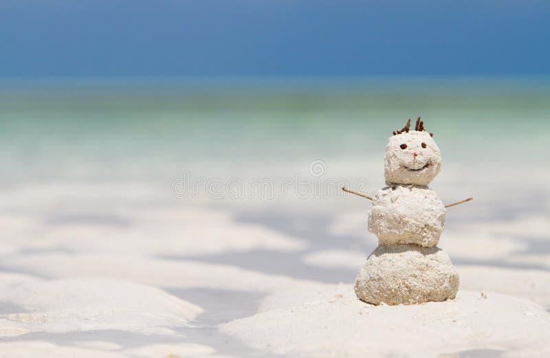 De vakantie van de winter stock foto