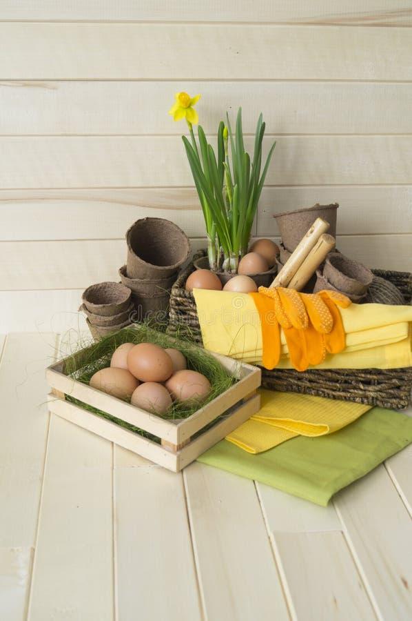 De Vakantie van Pasen Decoratieve Pasen-regeling met bloemen, installaties, potten en eieren De kleuren zijn bruin, geel, groen,  royalty-vrije stock fotografie