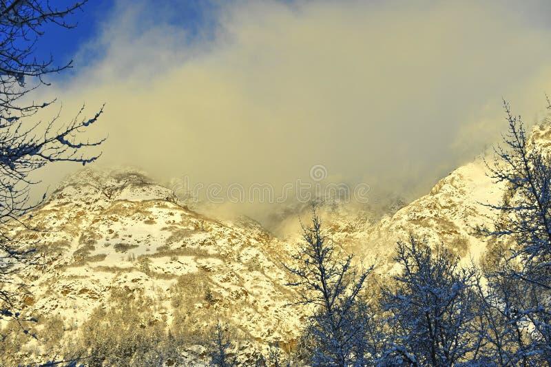 De vallei Chilkat onder het behandelen van sneeuw royalty-vrije stock foto's