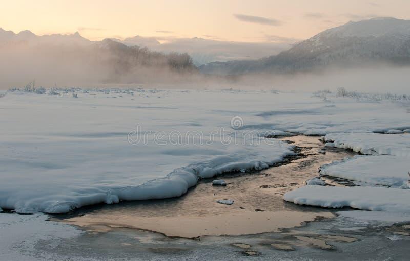 De vallei Chilkat onder het behandelen van sneeuw stock foto's
