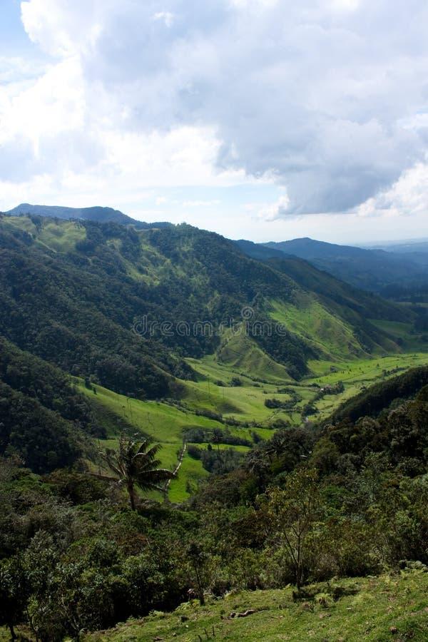 De vallei en de palmbossen van Cocora stock foto's
