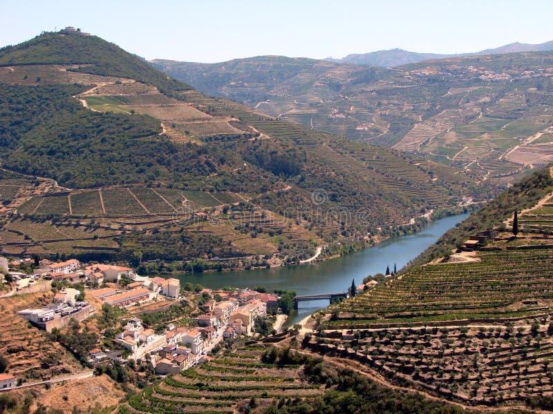De vallei en de wijngaarden van Douro stock foto's