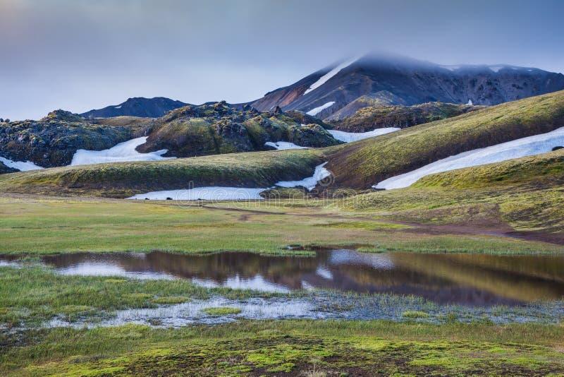 De vallei is overstroomd met smeltingswater royalty-vrije stock fotografie