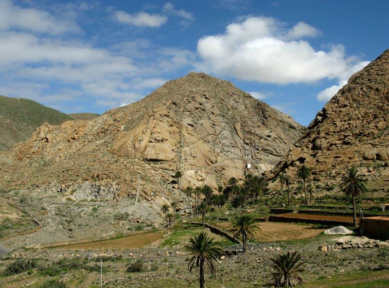 De vallei van Buenpaso op Fuerteventura royalty-vrije stock foto's