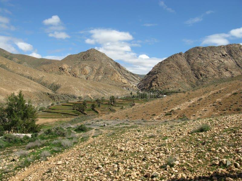 De vallei van Buenpaso op Fuerteventura stock afbeelding