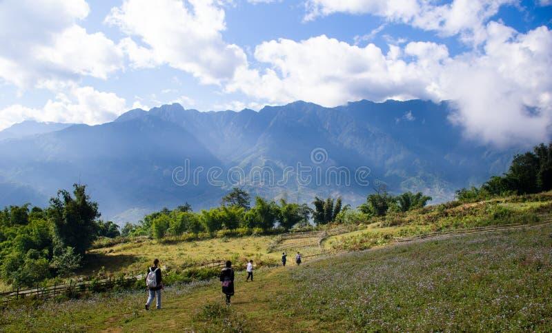 De Vallei van de Sapa stock fotografie