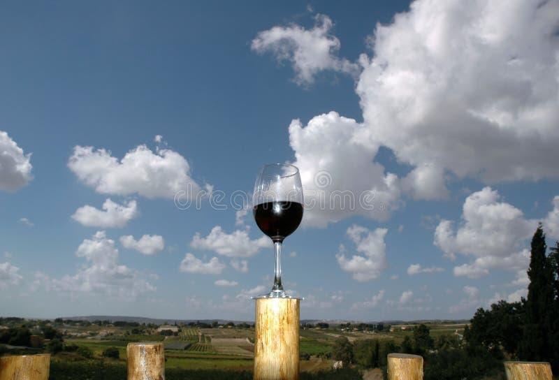 De vallei van de wijn stock foto