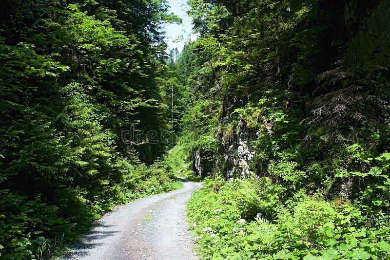 De vallei van deelilanovska riep Poort - kruisend tussen grote rotsen bij de ingang aan de weg aan het geroepen bergzadel stock afbeelding