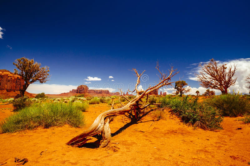 De Vallei van het monument, het StammenPark van Navajo, Arizona, de V stock foto's