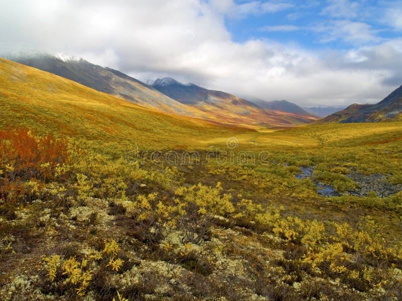De Vallei van Klondike van het noorden royalty-vrije stock foto's