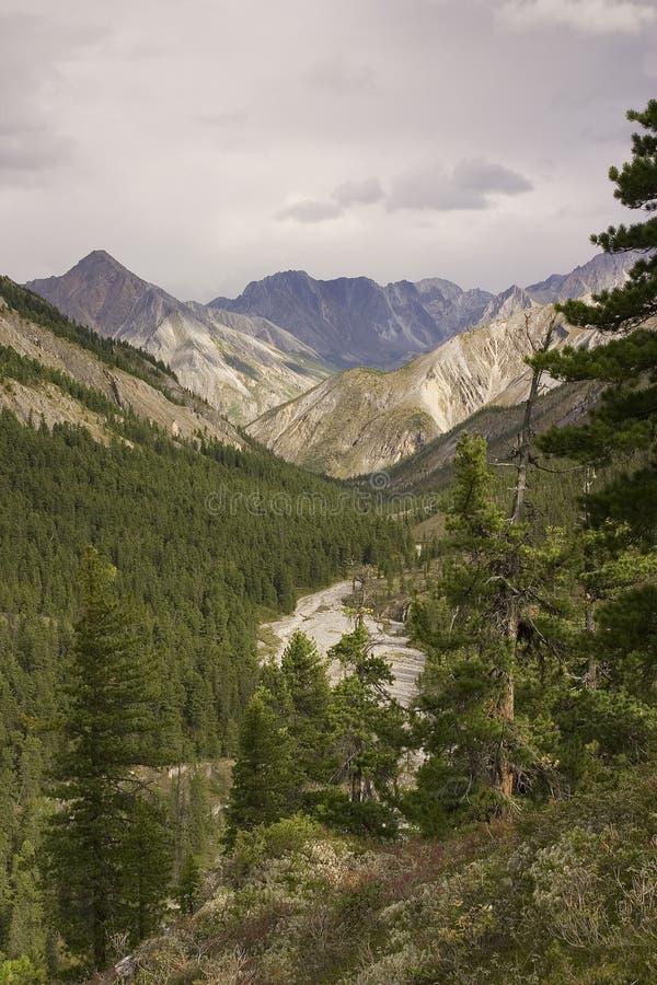 De vallei van Mountian royalty-vrije stock fotografie