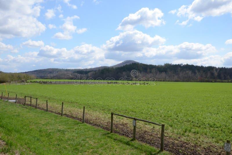 De Vallei van Sauteenacoochee, GA royalty-vrije stock fotografie