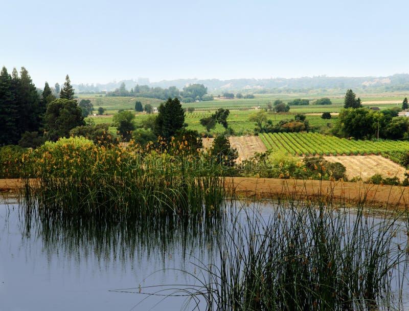 De vallei van Sonoma stock fotografie