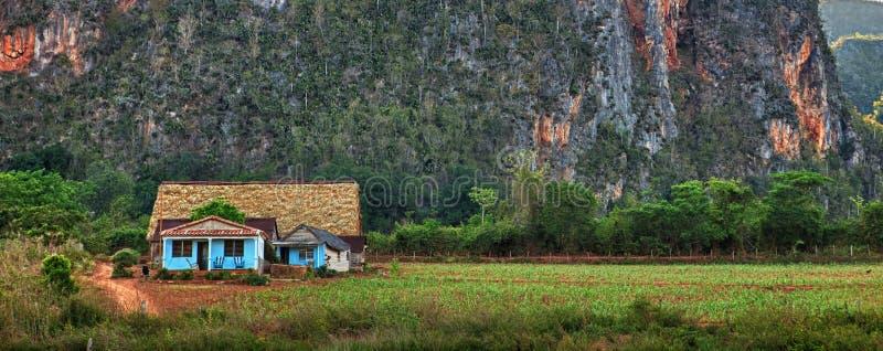 De Vallei van Vinales, Cuba. stock afbeelding