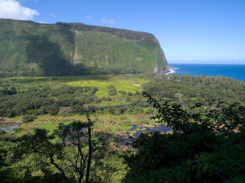 De Vallei van Waipio stock foto's