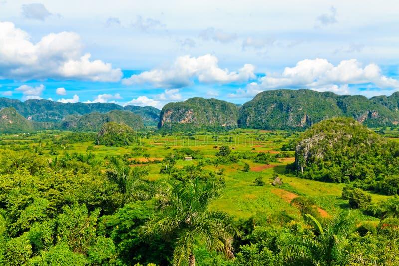 De vallei Vinales in Cuba stock foto's
