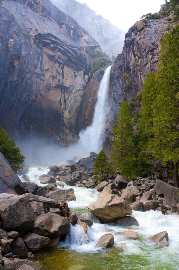 De valleidalingen van Yosemite stock foto