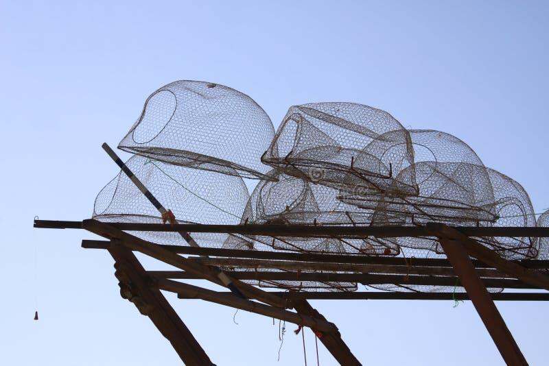 De vallen van de zeekreeft royalty-vrije stock foto's