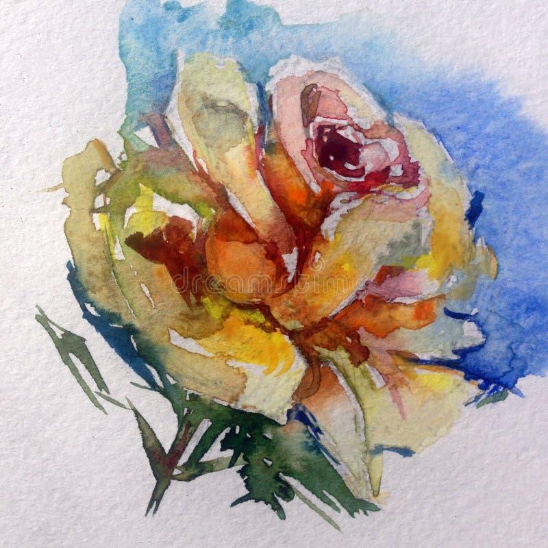 De van de achtergrond waterverfkunst kleurrijke bloem magische thee nam toe stock illustratie