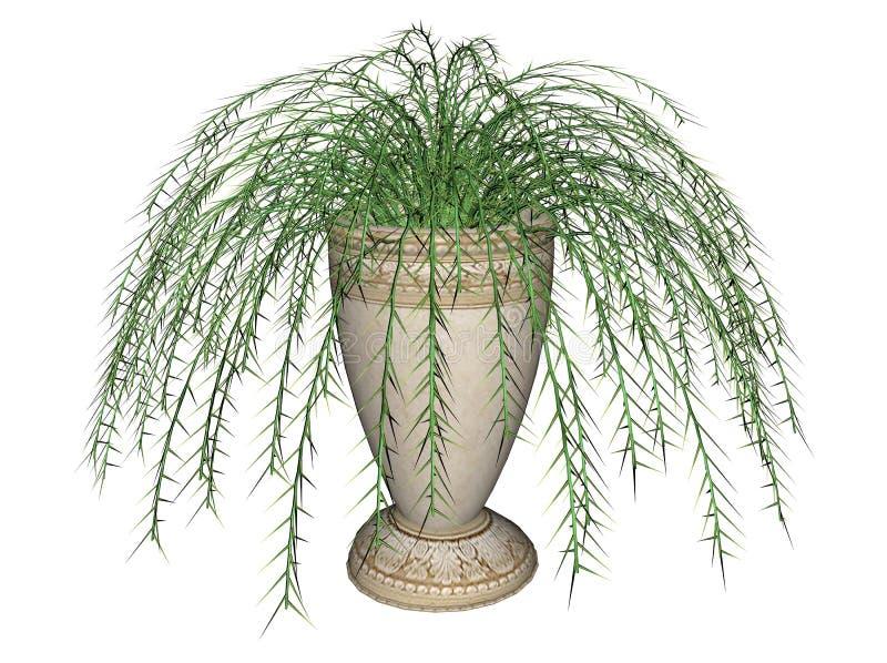 De Varen van de asperge, Hangende Installatie vector illustratie