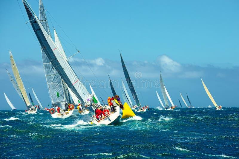 De varende jachten van de beginregatta sailing Luxejacht stock foto