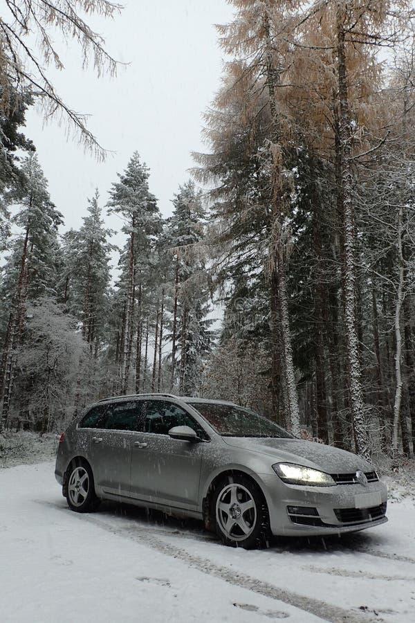 De variant/het landgoed van Volkswagen Golf MK7 in een bos van de pijnboomboom met dalende sneeuw royalty-vrije stock afbeeldingen