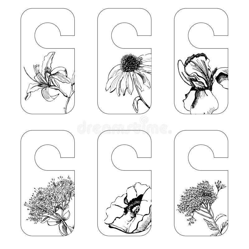 De vastgestelde markeringen met grafische schets van de zomer bloeit iris, sedum, papaver, hemerocallis, echinacea, eupatorium vector illustratie