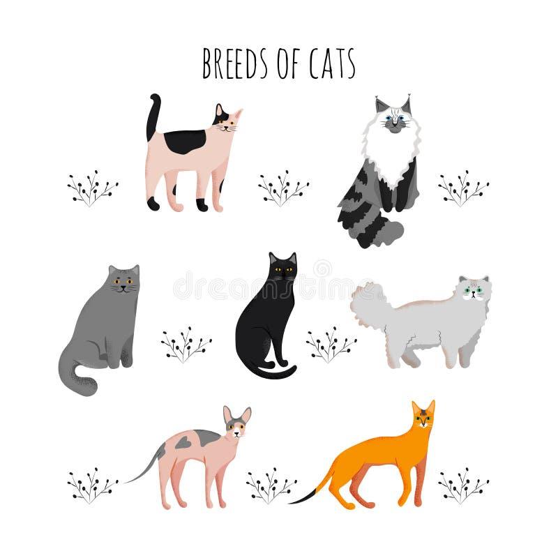 De vastgestelde stijl van het pictogrammenbeeldverhaal van kattenrassen Leuke karakters voor verschillend ontwerp royalty-vrije illustratie
