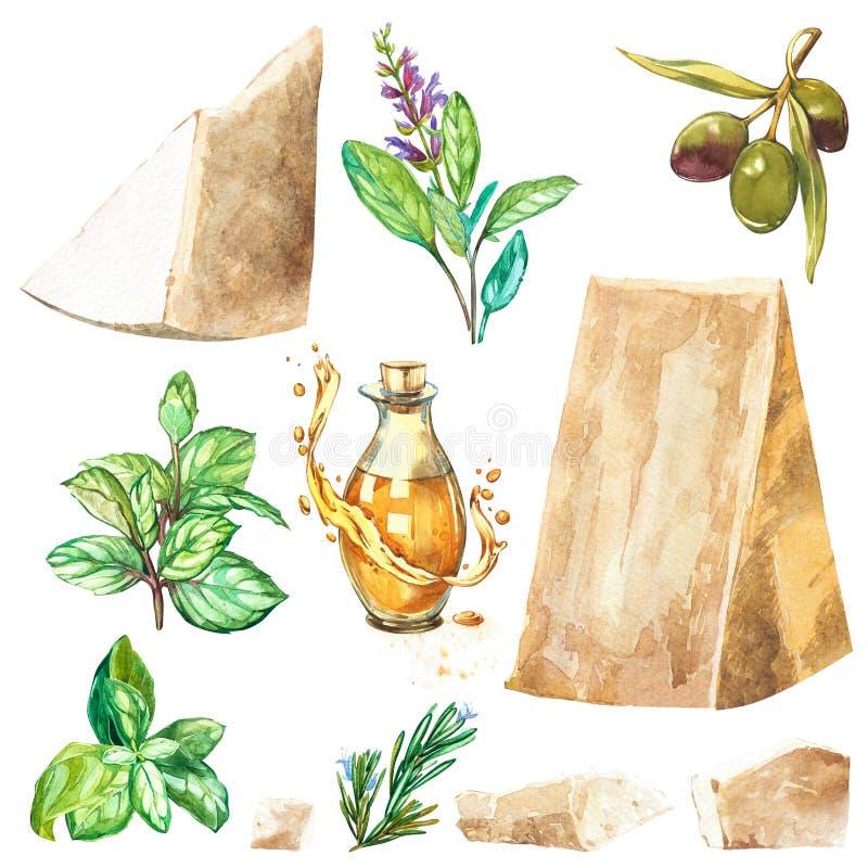 De vastgestelde stukken van de Parmezaanse kaaskaas met basilicum en wijze kruiden Olijven en olie Geïsoleerdj op witte achtergro vector illustratie