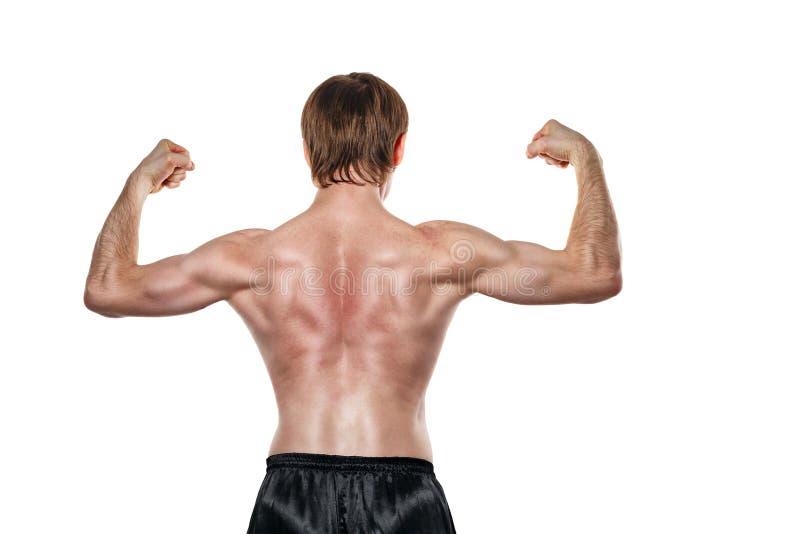 De vechter toont de achterspieren royalty-vrije stock afbeeldingen