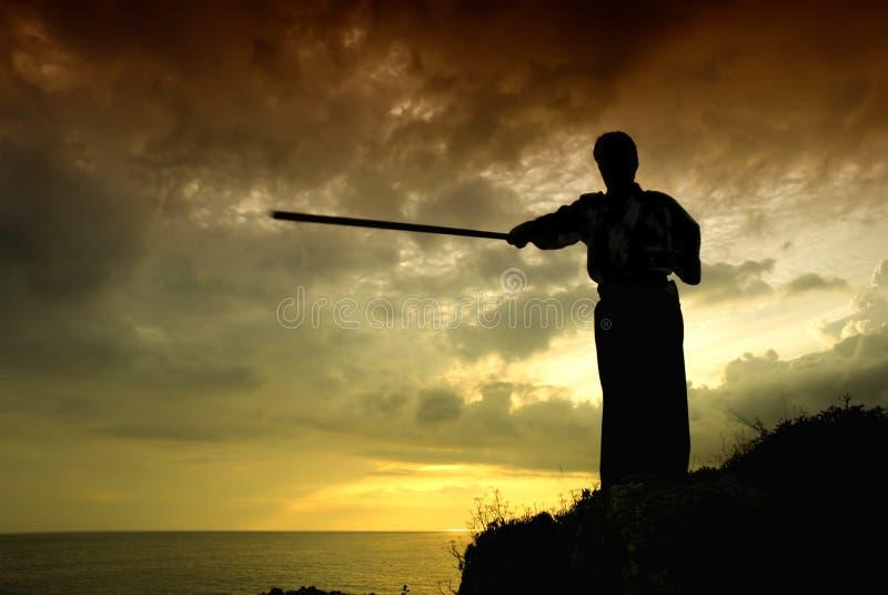 De vechter van Aikido stock fotografie