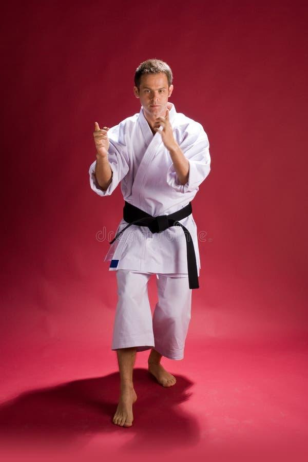 De vechter van de karate   royalty-vrije stock afbeeldingen