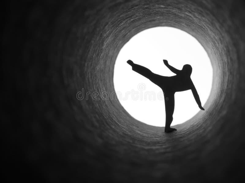 De vechter van de karate stock afbeeldingen