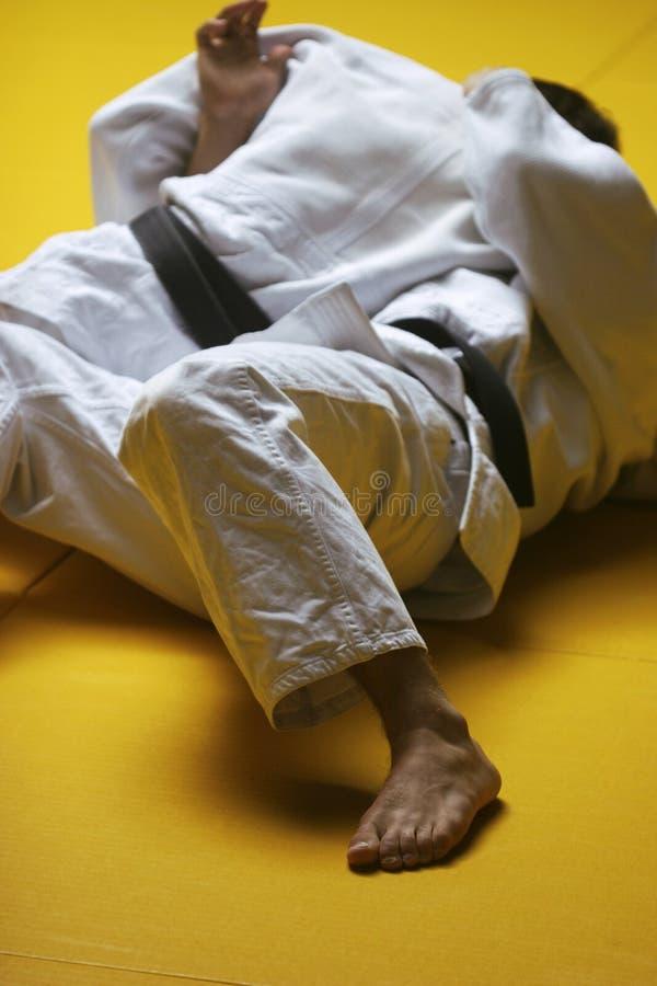 De vechters van het judo stock foto