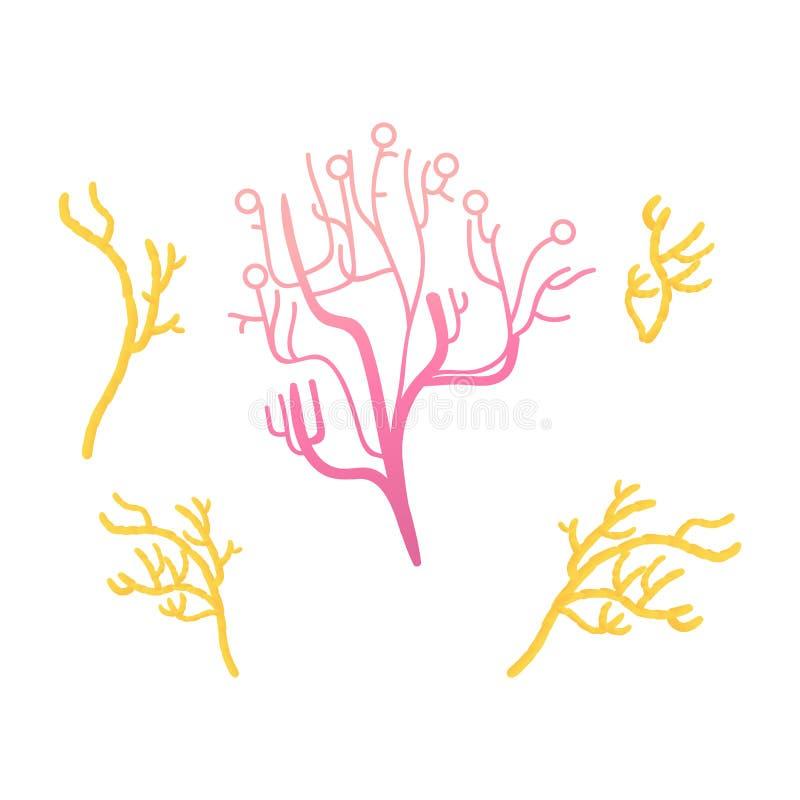 De vector abstracte geïsoleerde reeks van het koraal kleurrijke pictogram vector illustratie