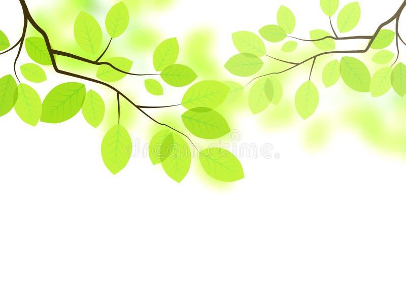 De vector Achtergrond van Bladeren vector illustratie