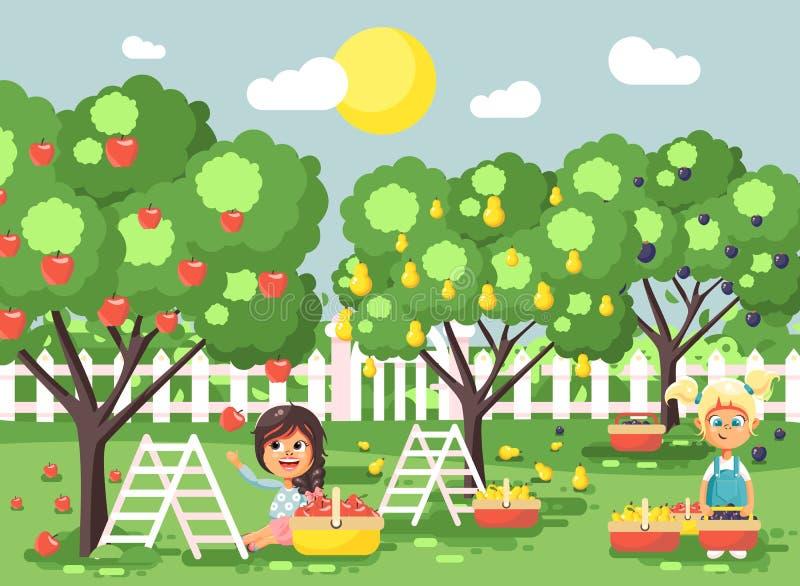 De vector de karakterskinderen van het illustratiebeeldverhaal twee meisjes oogsten de rijpe vruchten tuin van de de herfstboomga royalty-vrije illustratie