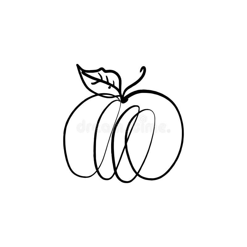 De vector enige schets van de pompoenlijn, hand getrokken illustratie stock illustratie