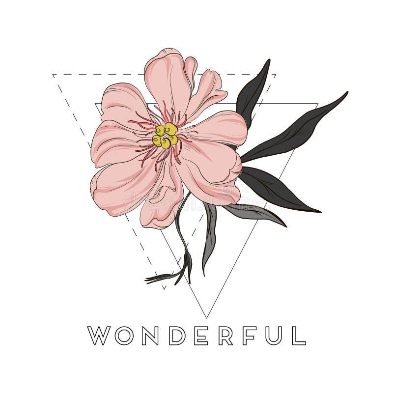 De vector hand-drawn pioen bloeit tekeningen Mooie abstracte bloemillustratie Hand getrokken bloemenschetsart. stock illustratie
