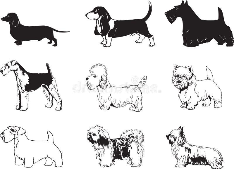 De vector Illustratie van Honden vector illustratie