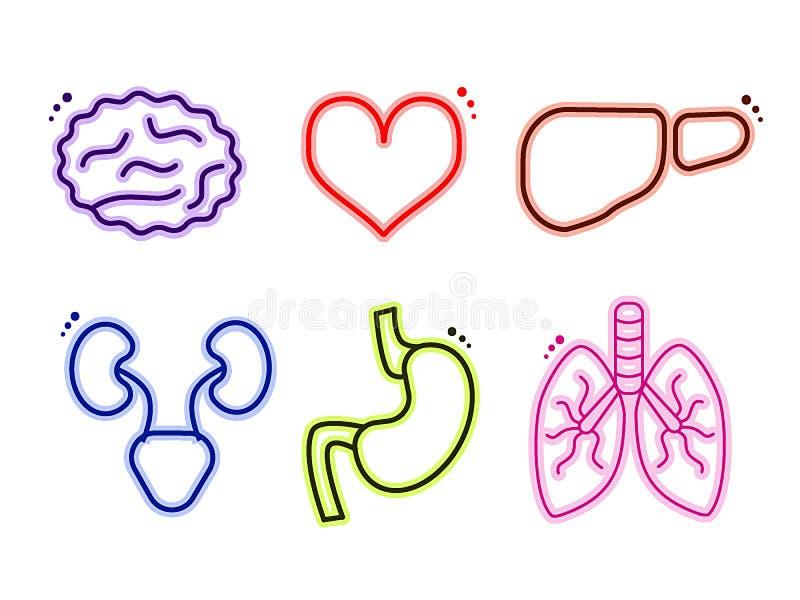 De vector multicolored menselijke interne pictogrammen van de organengeneeskunde royalty-vrije illustratie