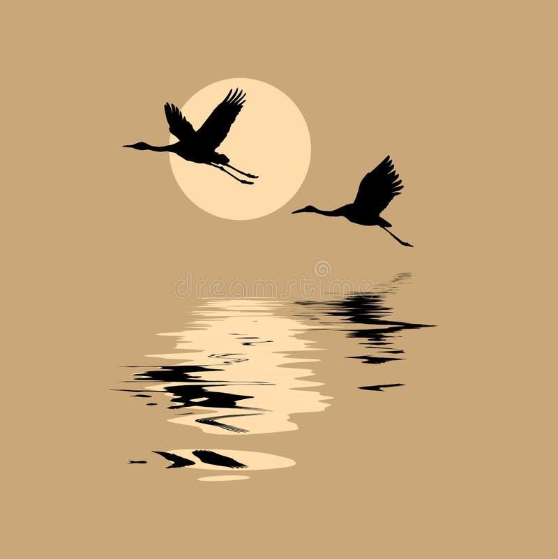 De vector silhouetteert vliegende kranen vector illustratie