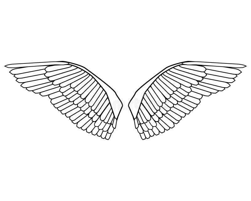 De vector van de vogelvleugels van Editable vector illustratie