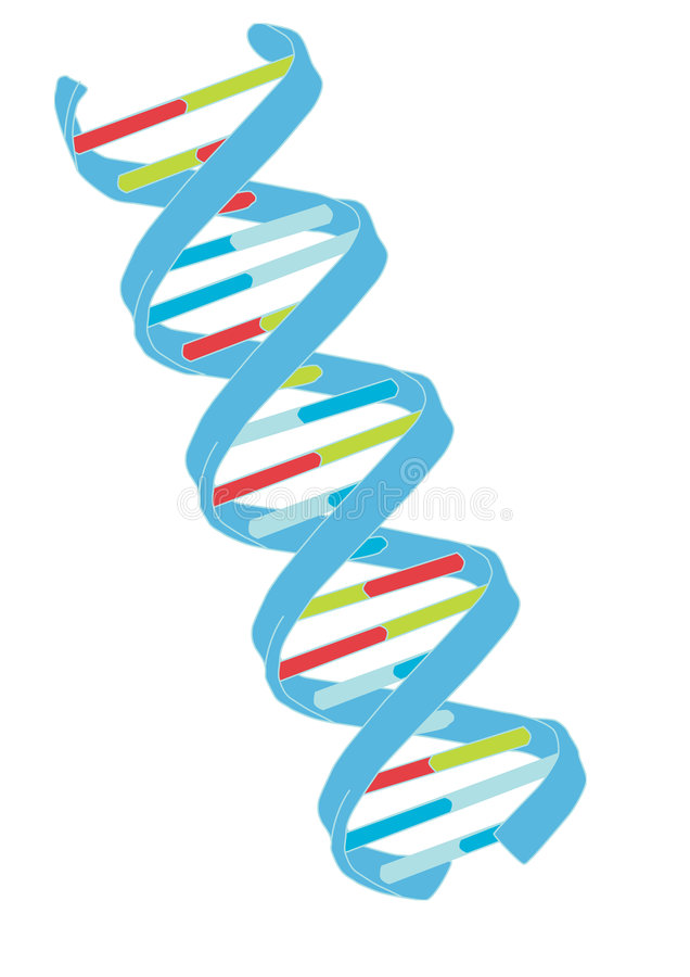 De vector van DNA stock illustratie