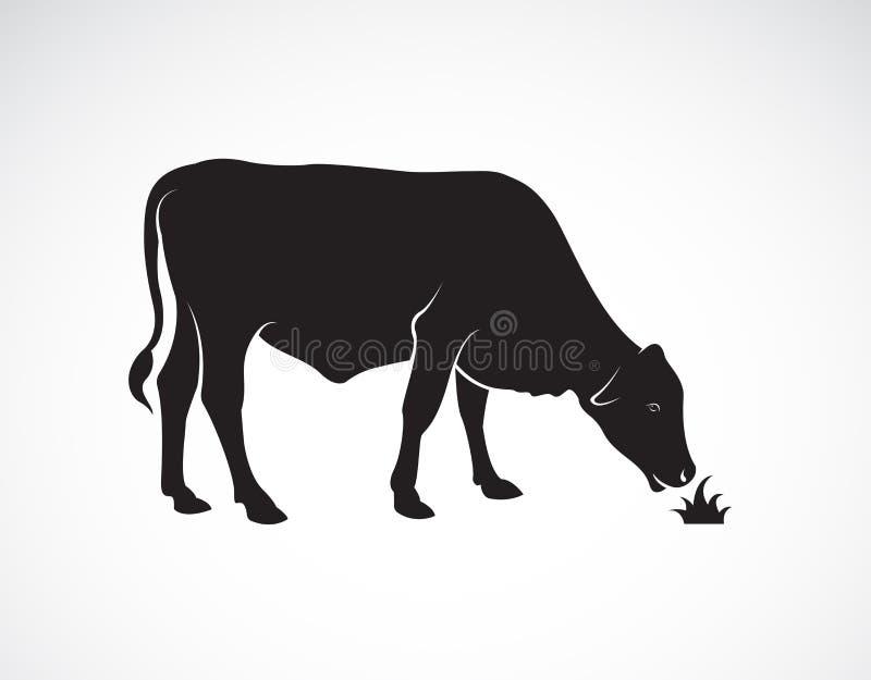 De vector van een koe eet gras op witte achtergrond Het dier van het landbouwbedrijf vector illustratie