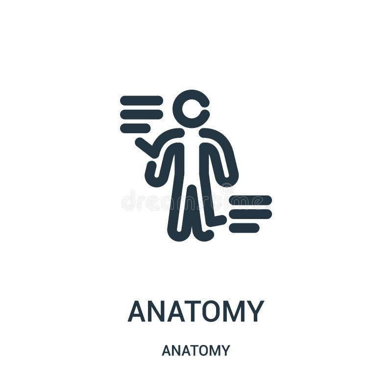 de vector van het anatomiepictogram van anatomieinzameling De dunne van het het overzichtspictogram van de lijnanatomie vectorill royalty-vrije illustratie
