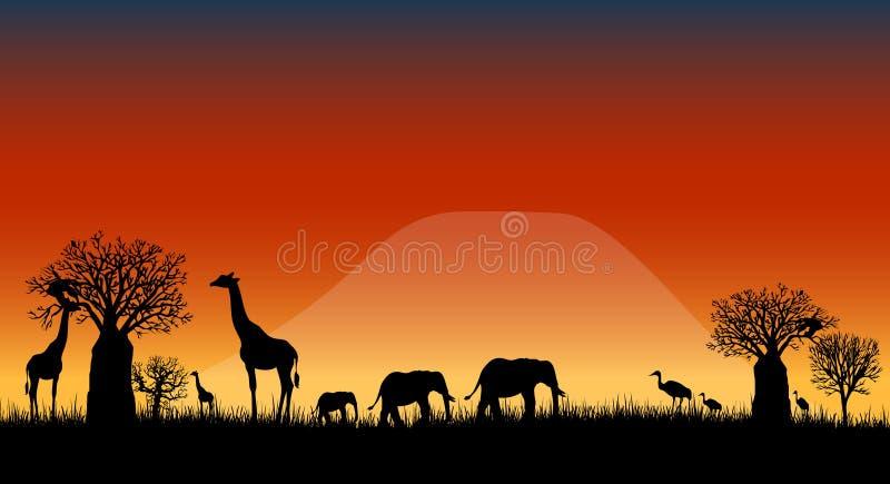 De vector van het de savannelandschap van Afrika royalty-vrije illustratie